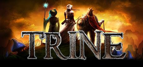 Trine Enchanted Edition sur PC (Dématérialisé)