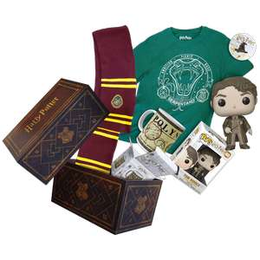 Box Officielle Harry Potter (avec figurine Pop! Exclusive Tom Jedusor...)