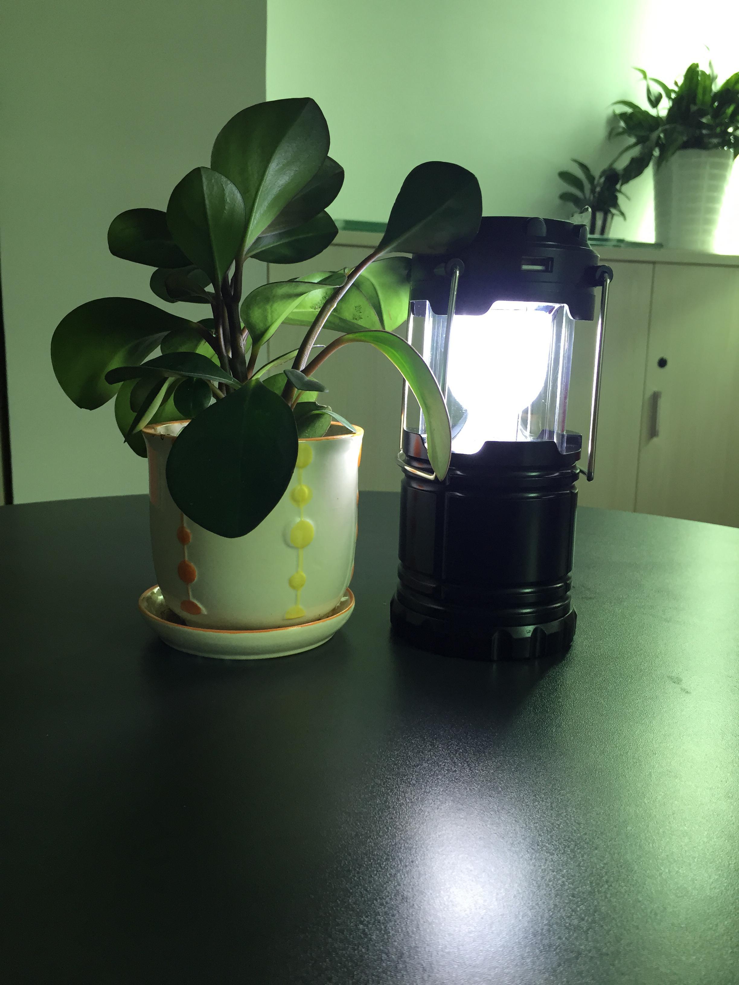 Lanterne solaire extérieure G-85 LED Power Bank - Noir