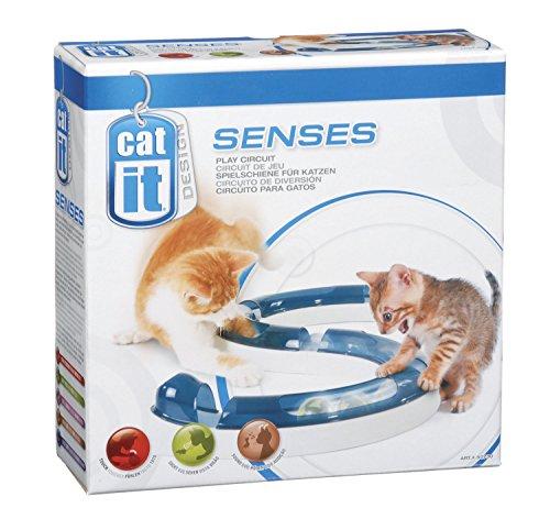 Jouet pour chats Catit Circuit Play Senses - avec balles lumineuses