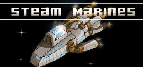 3 jeux PC (dématérialisés) (Steam marines, StarMade...)