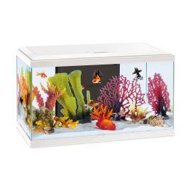 Aquarium Confort 60 Pro Inwa Blanc/noir