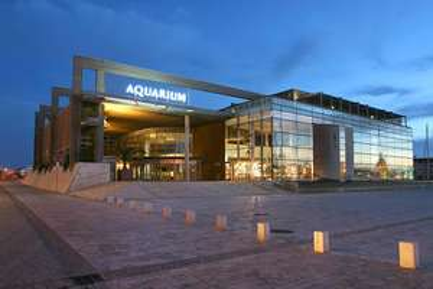 Pass annuel Adulte pour l'aquarium de La Rochelle (17)
