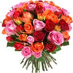 -15€ de réduction sur votre commande (Bouquet de fleurs pour la Saint Valentin ^^), si paiement via Buyster ou -5€ avec un code réduc
