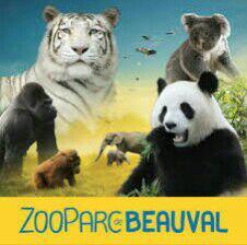 Entrée pour le zoo de Beauval