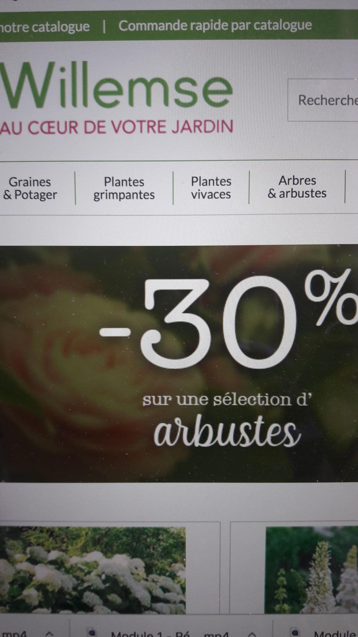 40% de réduction sur une sélection de plantes
