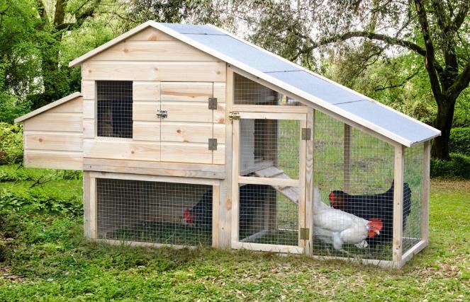 Poulailler en bois pour 3 poules - H94 x L185 x 64 cm