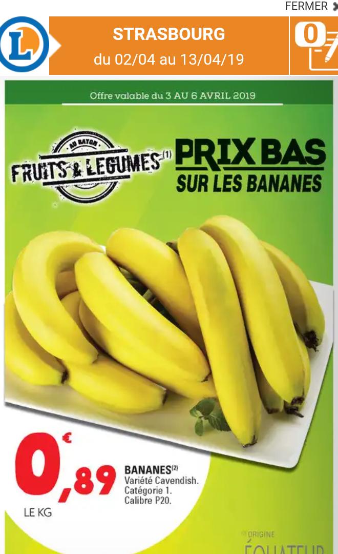 Bananes Cavendish Catégorie 1 Calibre p20 (Origine Equateur) - 1Kg