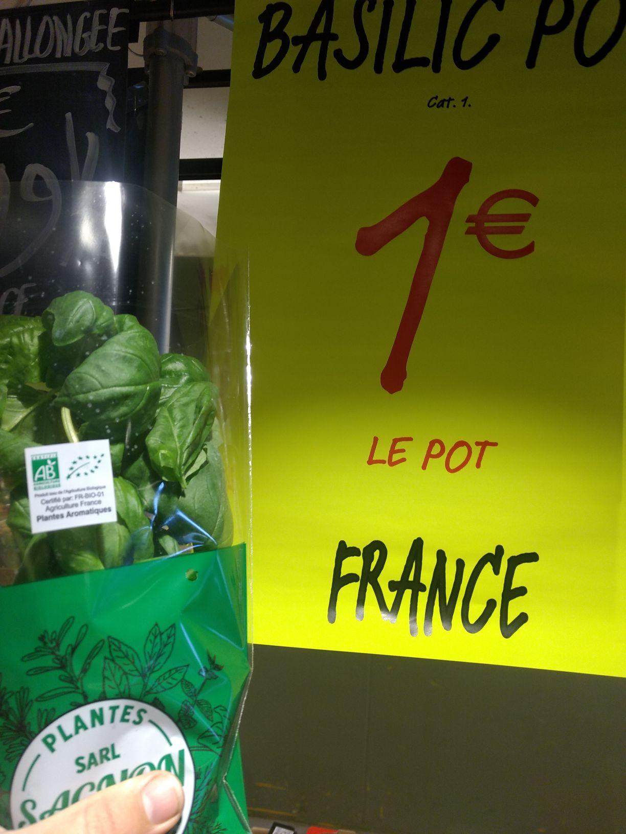 Plant de basilic AB: 30cm, Origine France - Provenc'halles (vu à Bourgoin-Jallieu - 38, validité nationale)