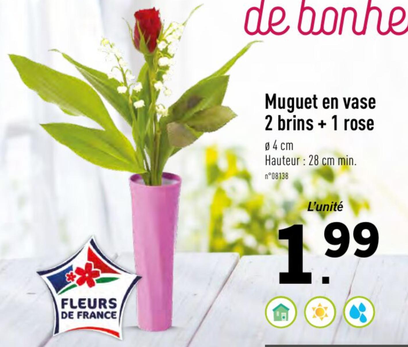 Muguet en vase 2 brins + 1 Rose