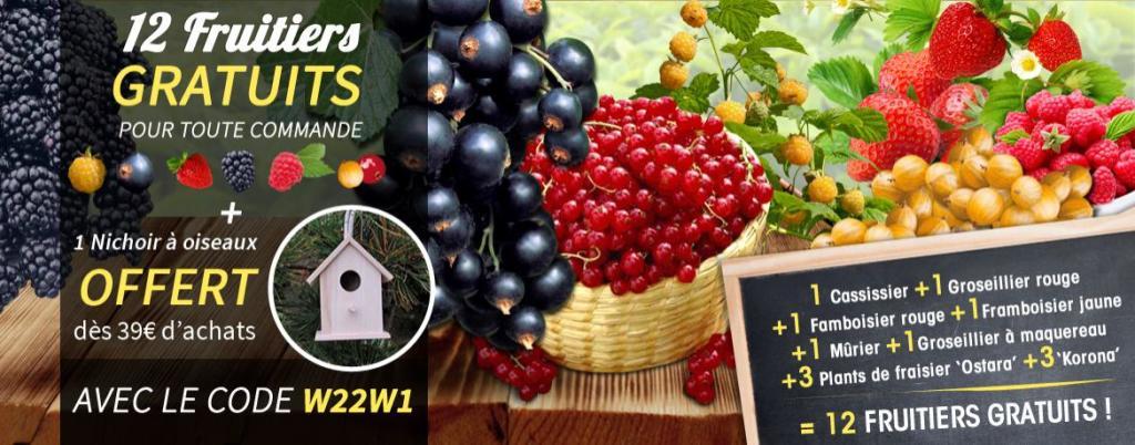 12 fruitiers offert pour toute commande