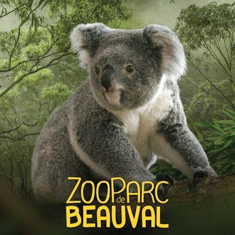 Billet 2 jours au ZooParc de Beauval