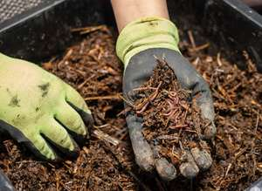 Distribution Gratuite de Compost - Valbonnais (38)