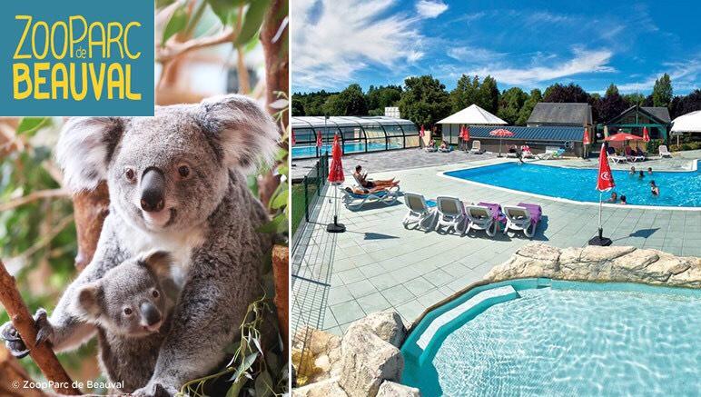 Séjour de 1 Jour/2 Nuits au Camping La Citadelle= Accès au ZooParc de Beauval à partir de 64€/Personne