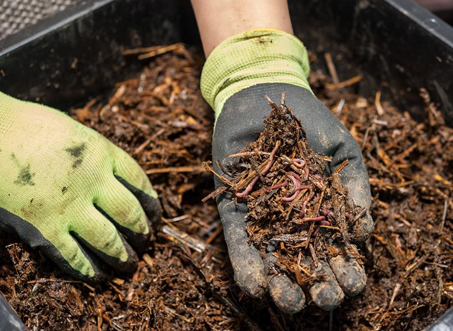Distribution Gratuite de Compost  pour les habitants de la Communauté de Communes du Pays de Sommières - Lecques (30)