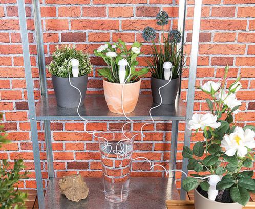 5 doseurs d'irrigation pour pots de fleurs, avec pointe en argile et tuyau Royal gardineer (Frais de port compris)