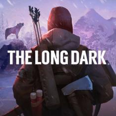 The Long Dark sur PC (Dématérialisé)