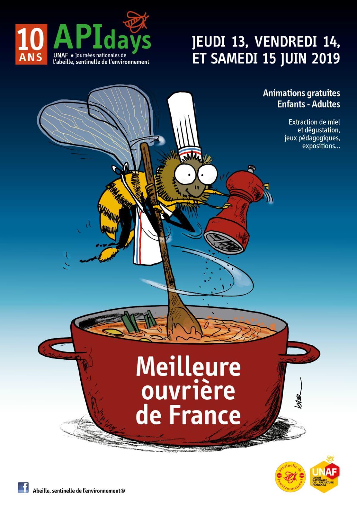 Journées Nationales de l'Abeille - Visites, Extractions, Dégustations & Ateliers de Fabrication Gratuits (abeillesentinelle.net)