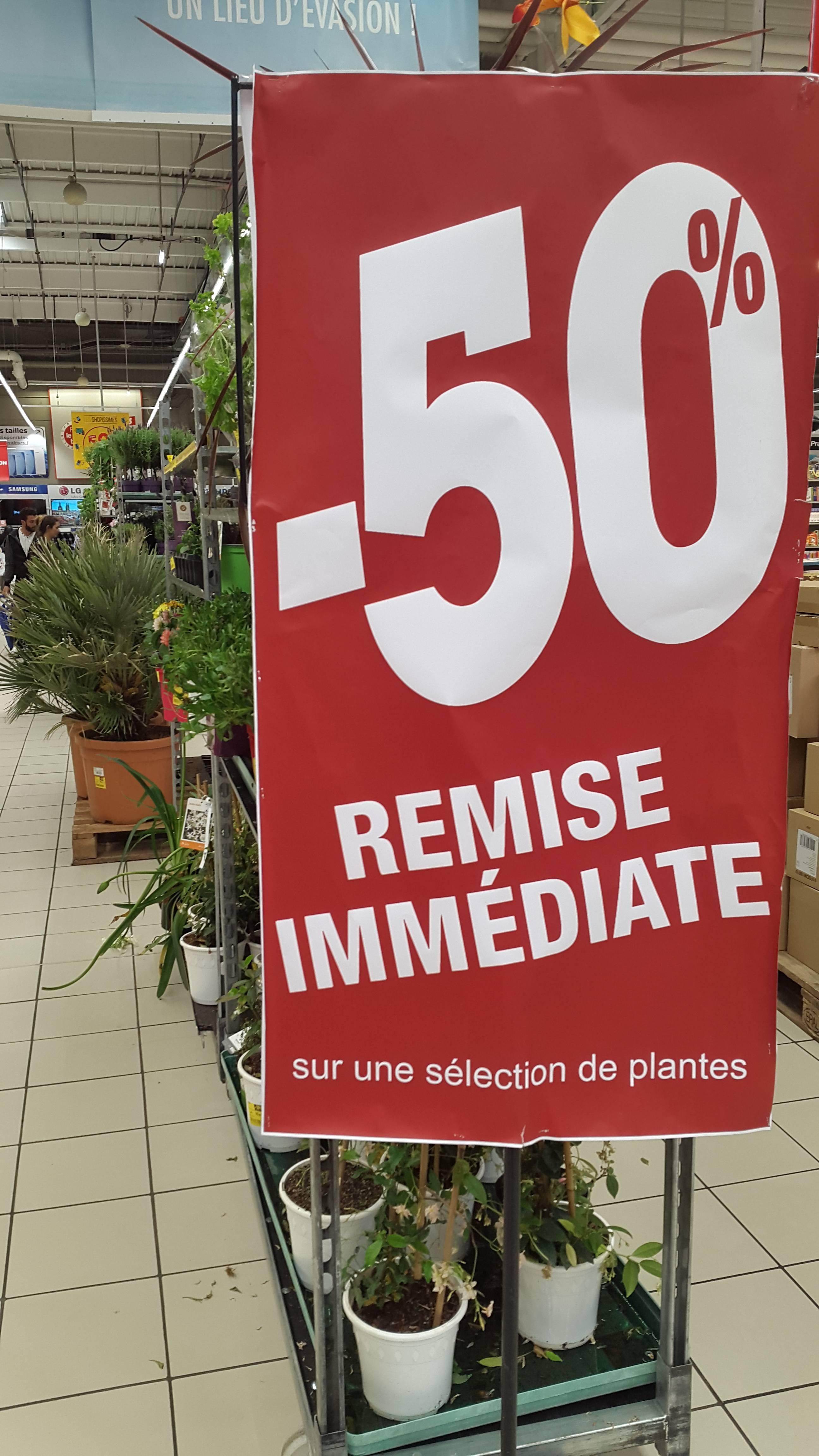 -50% de remise immédiate sur une sélection de plantes et de fleurs -  Carrefour Riom Ménétrol (63)