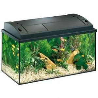 Aquarium équipé Eheim Aquastar - 54L, 60x30x36cm