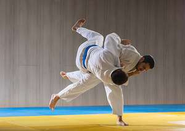 Distribution gratuite de 2 places par famille pour le championnat de France de Judo par équipes - Trélazé (49)