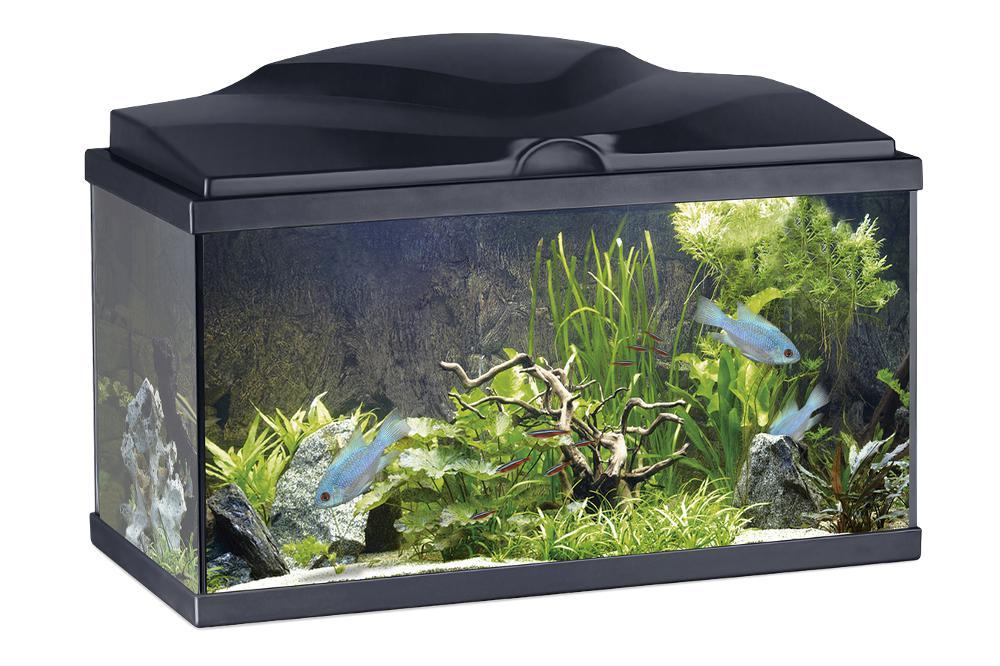 Aquarium 48 litres Ciano tout équipé