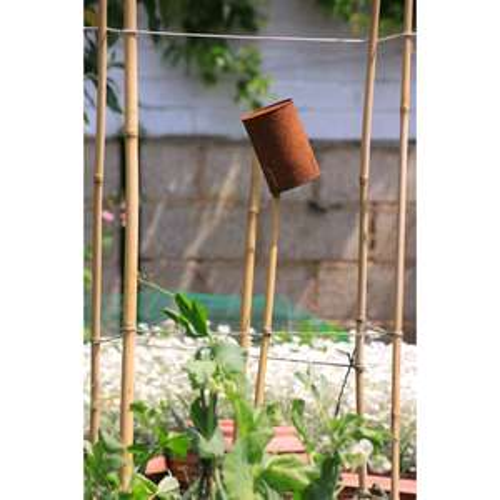 Tuteur en bambou naturel - 60 cm