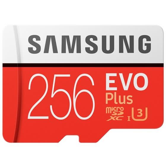 Cartes microSDXC Samsung Evo Plus - 256 Go