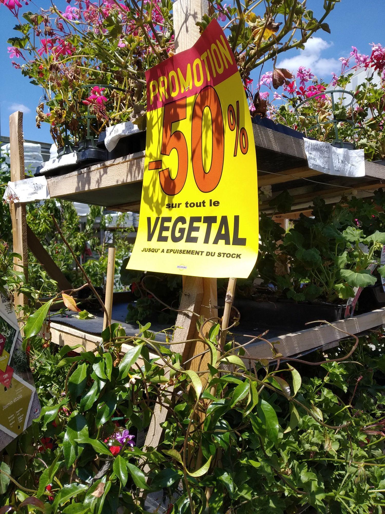 50% de réduction sur tout le végétal (Saint-Germain-lès-Arpajon 91)