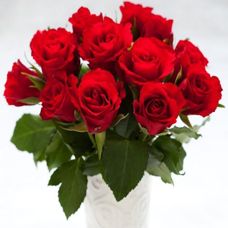 Bouquet de 13 roses - Différents coloris