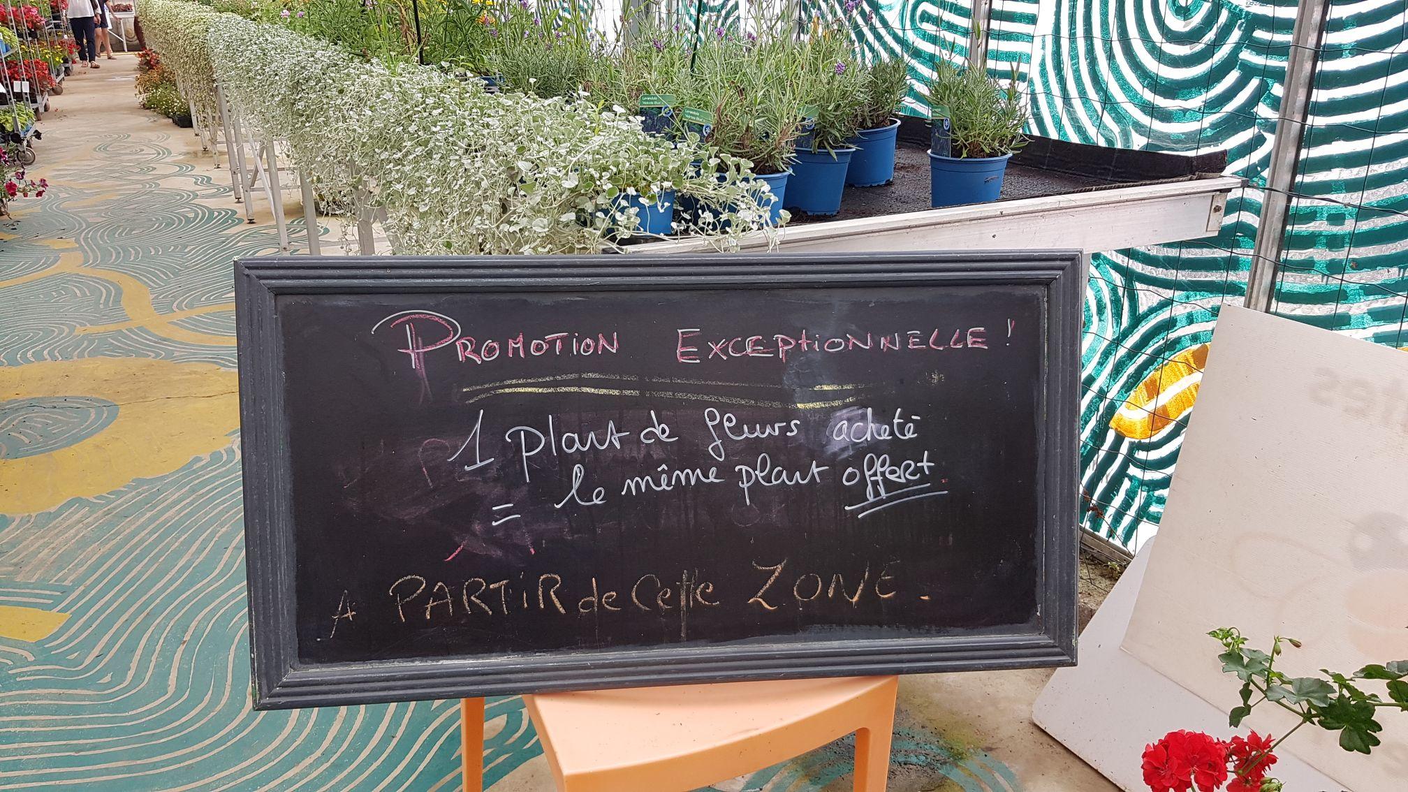 1 plant de fleurs acheté = 1 offert - Jardin de Balgan à Séné (56)