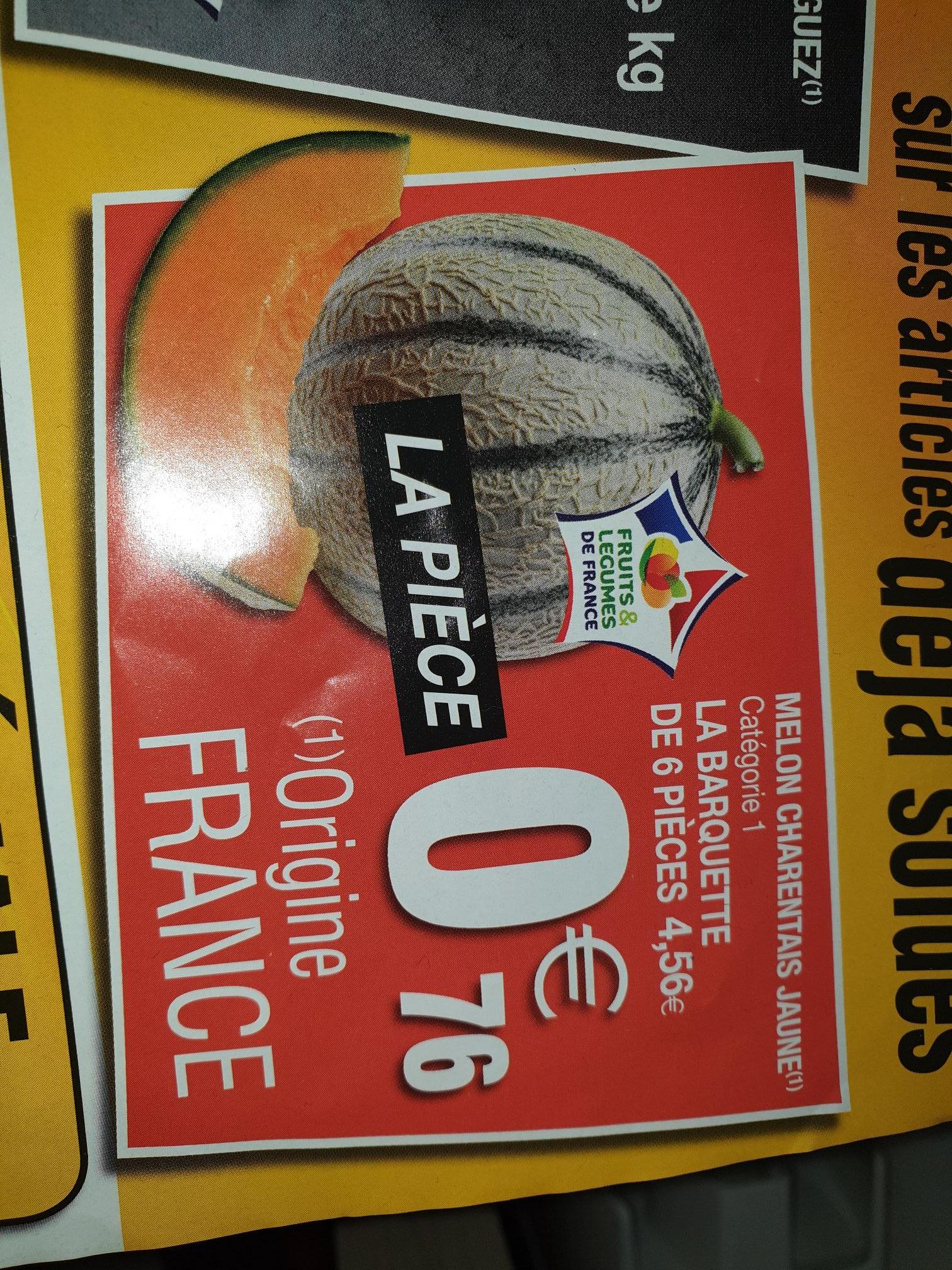 Lot de 6 Melon (charentais france) - Dommartin Les Toul (54)