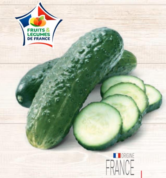 Concombre noa - Catégorie 1, Origine France