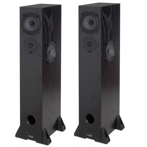 Paire d'enceintes colonnes Rega RS3 noires