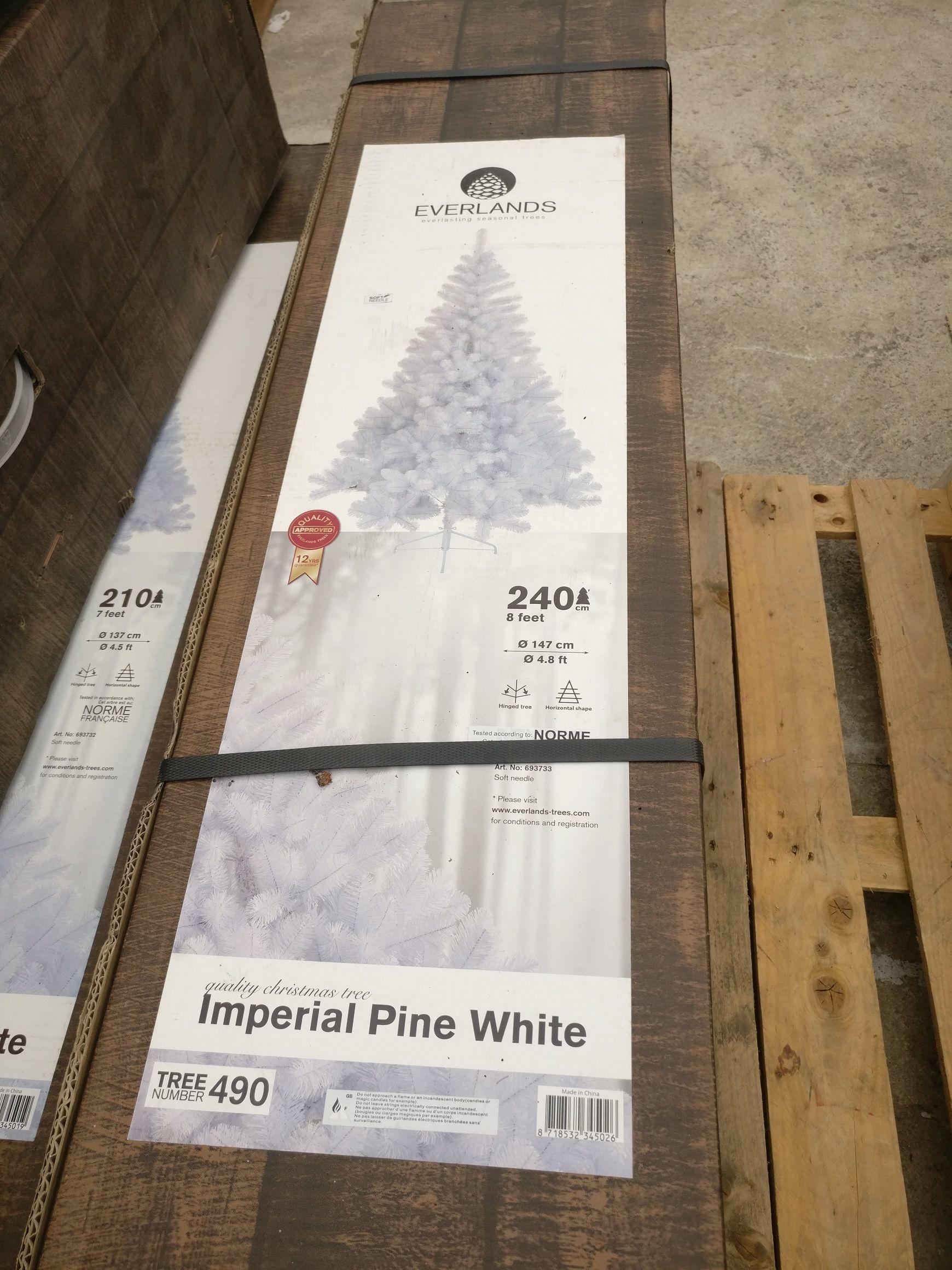 Sapin de Noël Imperial Pine White Everland - 240 cm - Vegetalis Hyères (83)