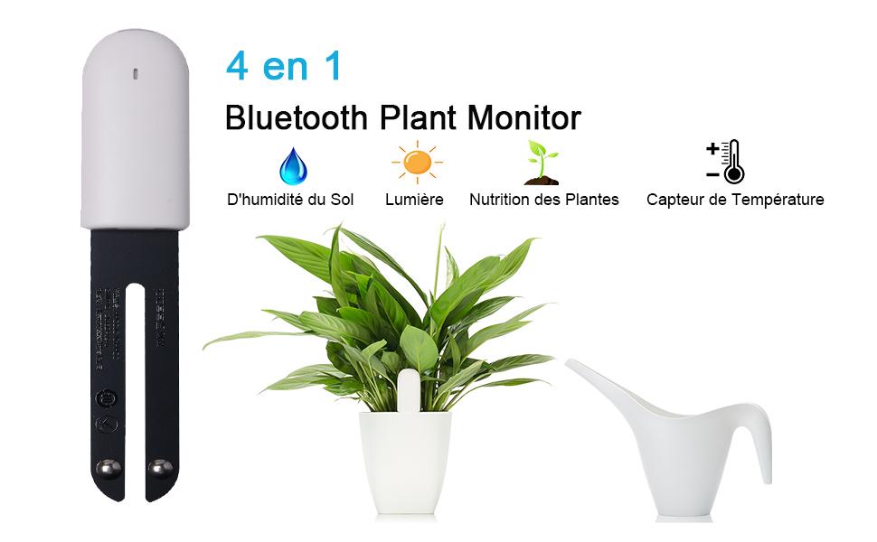 Capteur Connecté 4-en-1 Xiaomi Flower Care - Bluetooth, capteur de luminosité / humidité / température / nutriments