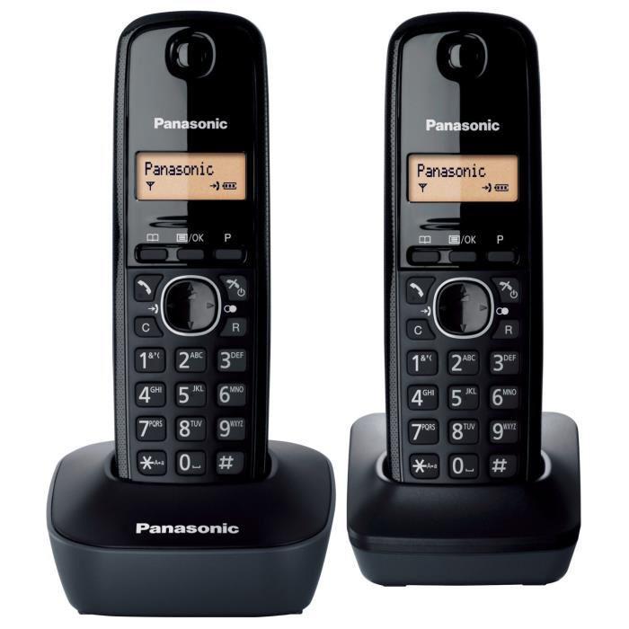 Lot de 2 combinés Panasonic Duo KX TG1612FRH