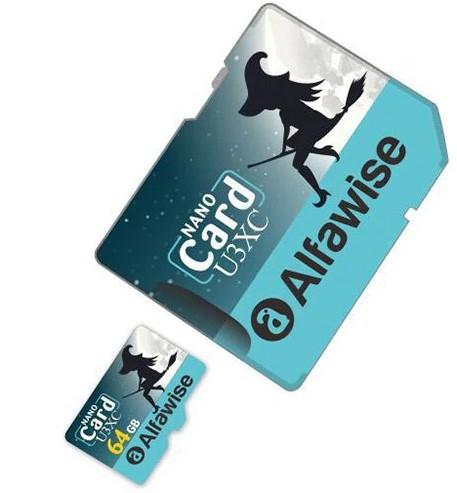 Carte MicroSD Alfawise édition Halloween - 64 Go