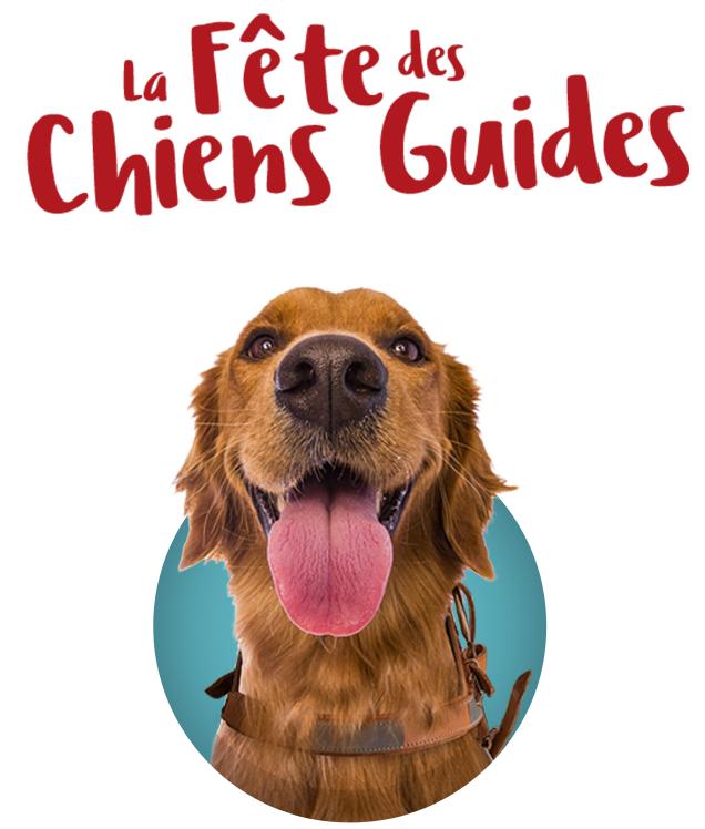 Écoles de Chiens Guides : Visites guidées, Initiation au Braille Gratuites