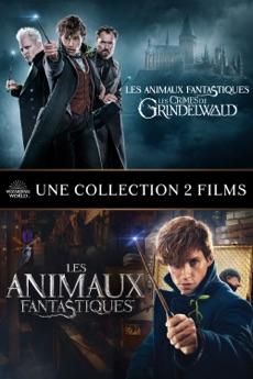 Lot des 2 films : Les Animaux Fantastiques 4K Dolby Atmos Vision (Dématérialisé - VF)