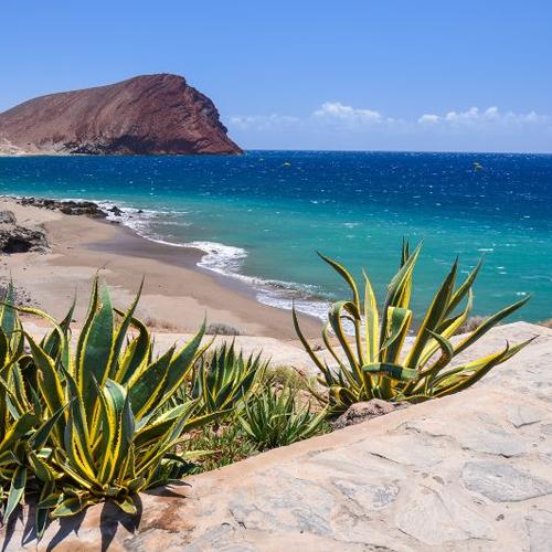 Vol A/R Toulouse (TLS) <=> Tenerife Sud (TFS) aux Îles Canaries - (15 jours) du 23 Juin au 07 Juillet 2020 (Bagage à main inclus)