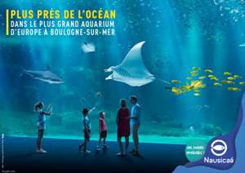 Billet adulte pour l'aquarium Nausicaa de Boulogne sur Mer (62)