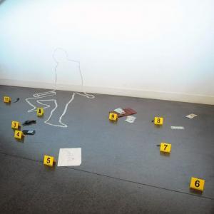 Exposition gratuite La science à la poursuite du crime + Animation scène de crime aux Archives Nationales - Pierrefitte-sur-Seine (93)