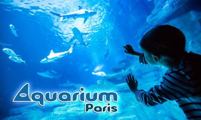 Visite nocturne Adulte pour l'Aquarium de Paris avec une coupe de champagne - Paris (75)