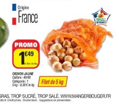 Filet de 5kg d'oignon - Origine France