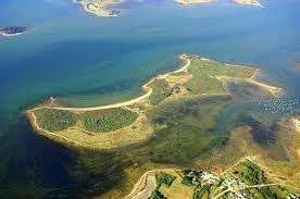 Visite Guidée Gratuite de l'Ile de Boede - Séné (56)