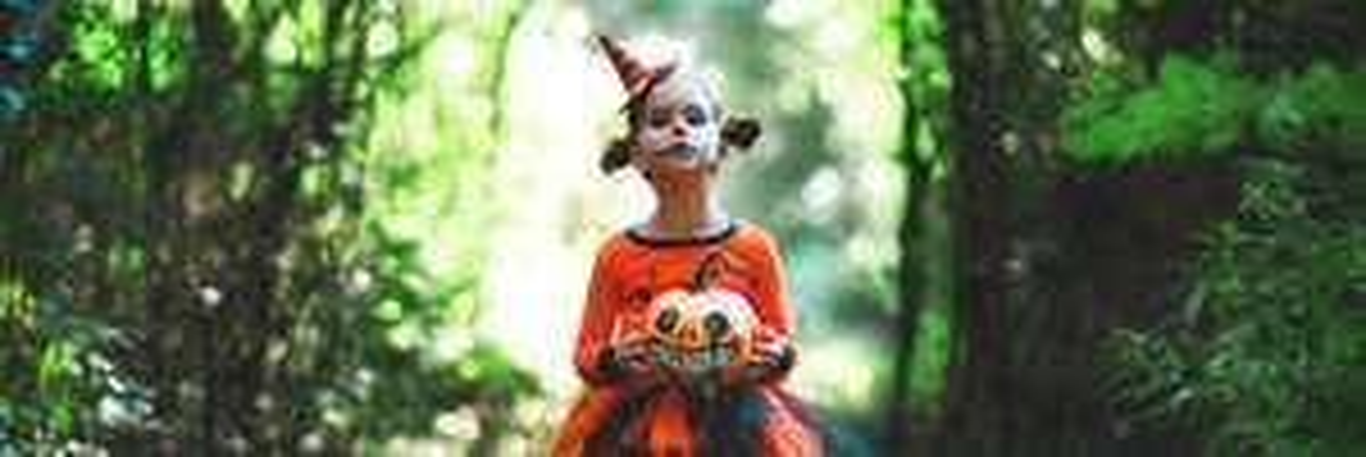 Entrée gratuite à Zoodysée pour les enfants de -12 ans déguisés - Villiers-en-Bois (79)