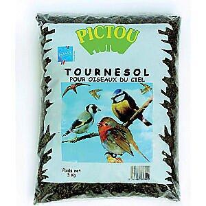 Sac de graines de tournesol pour oiseaux - 3Kg