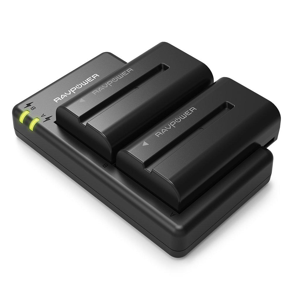 2 batteries de rechange RAVPower NP-F550 - 2900mAh + Chargeur (Vendeur Tiers)