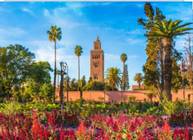 Vol A/R Paris Vatry <-> Marrakech du 7 au 14 décembre (bagage cabine uniquement)